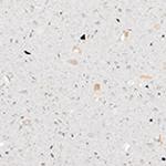 Royal Ivory etherium surface product swatch